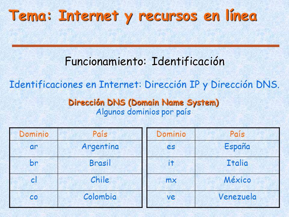 Tema: Internet y recursos en línea Funcionamiento: Identificación Identificaciones en Internet: Dirección IP y Dirección DNS.