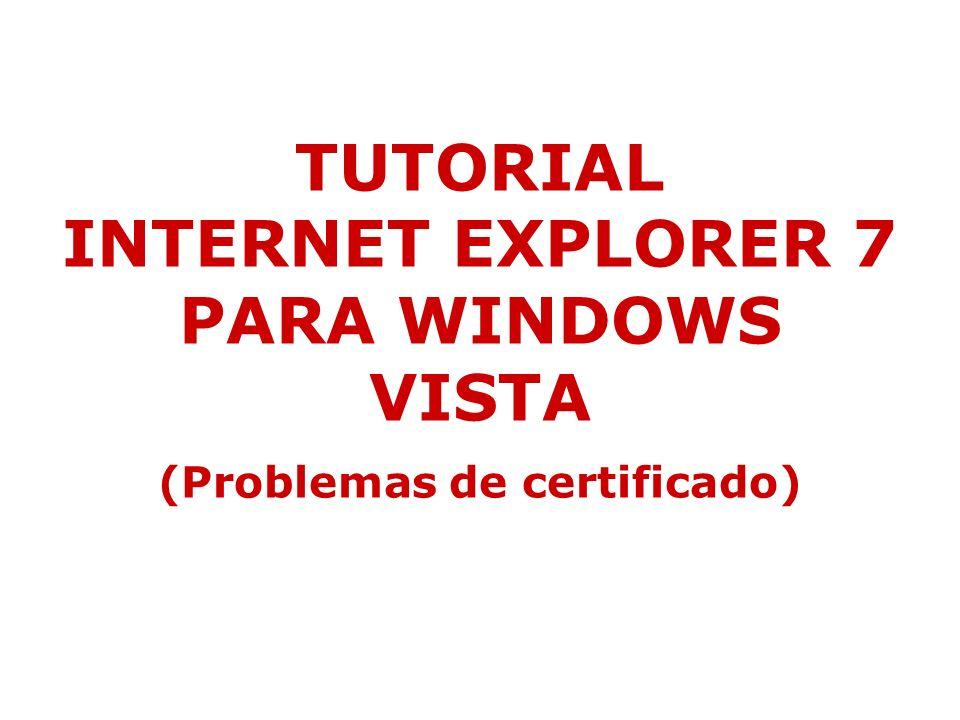 INTERNET EXPLORER 7 – WINDOWS VISTA Volvemos otra vez al explorador y pinchamos de nuevo en error de certificado, nos sale otra vez la ventanita y pinchamos en ver certificado