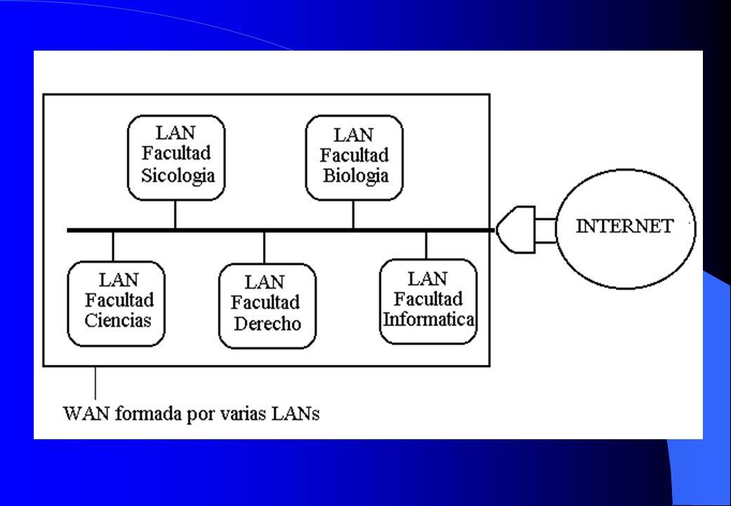 Redes de Área Local: elementos El servidor (server) Las estaciones de trabajo (workstations).