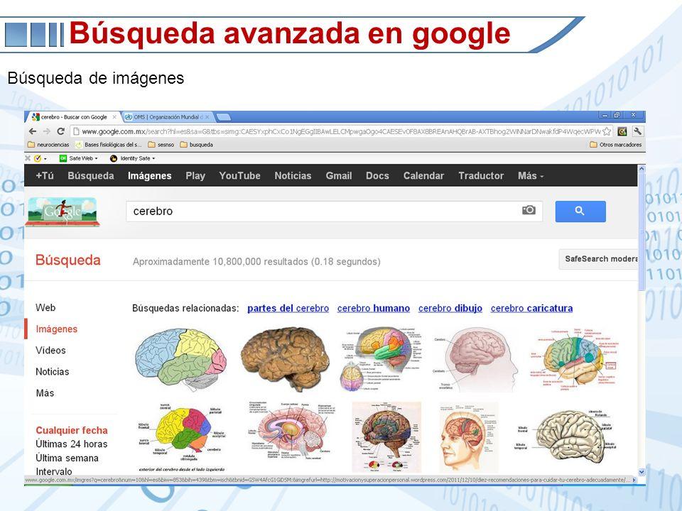 Búsqueda avanzada en google Búsqueda de imágenes