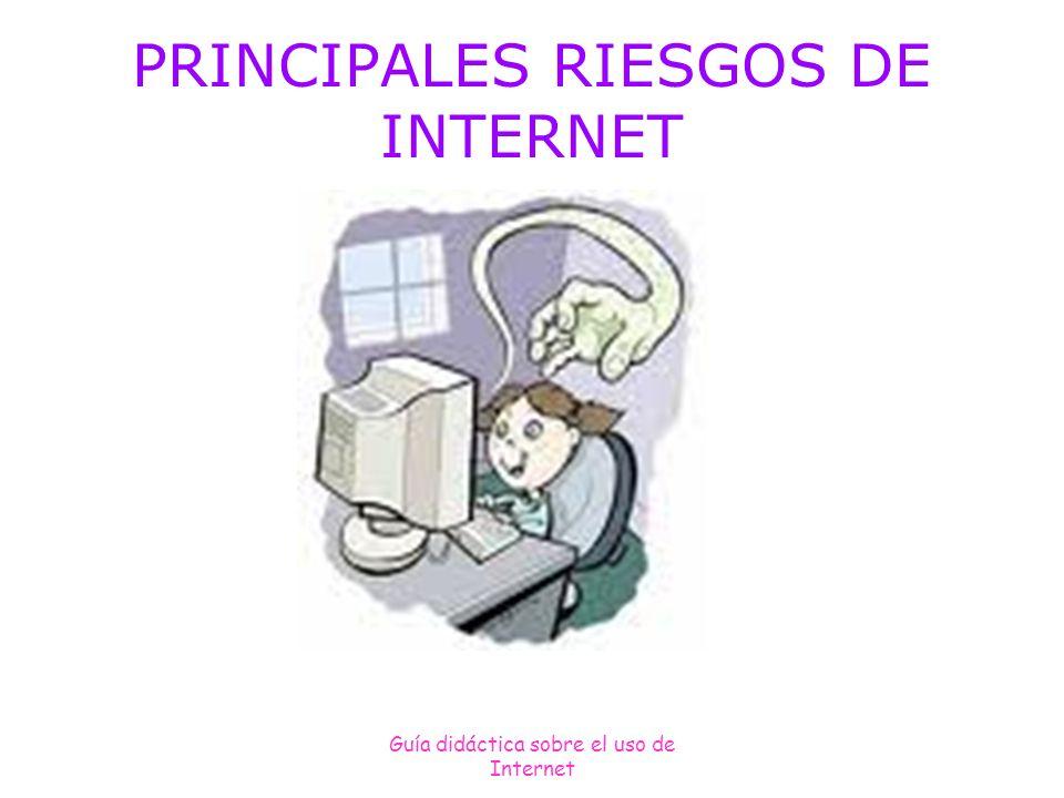 Guía didáctica sobre el uso de Internet PRINCIPALES RIESGOS DE INTERNET