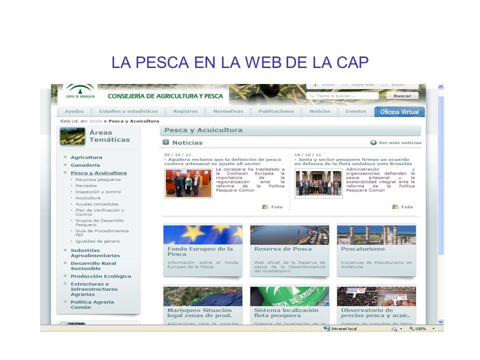 LA PESCA EN LA WEB DE LA CAP
