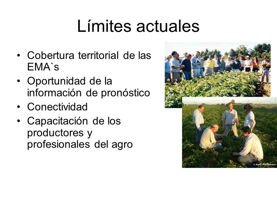 Límites actuales Cobertura territorial de las EMA`s Oportunidad de la información de pronóstico Conectividad Capacitación de los productores y profesi