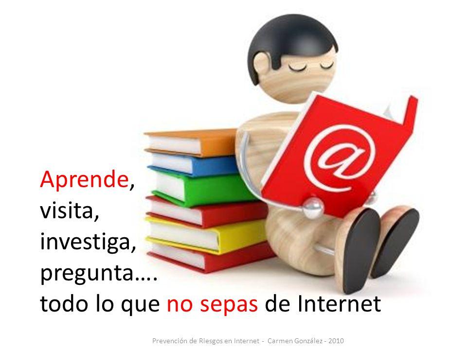 Prevención de Riesgos en Internet - Carmen González - 2010 Aprende, visita, investiga, pregunta…. todo lo que no sepas de Internet