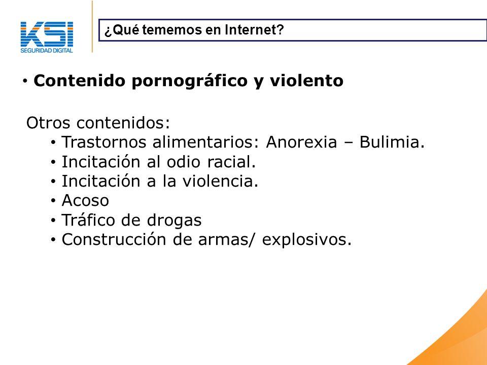 Contenido pornográfico y violento ¿Qué tememos en Internet.