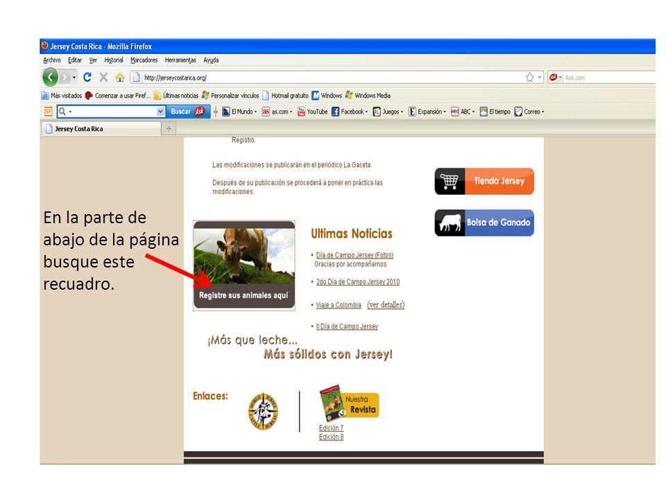 420 PPP MARIPOSA 21/05/2001 25/05/2001 15987 423 PPP CORAZON 30/05/2001 03/06/2001 15988 424 HF FLOR 05/06/2001 15/06/2001 15989 Al final de la pantalla se muestran varias opciones Cantidad de animales presentes en su finca Cantidad de páginas que contienen animales Puede seleccionar cualquiera de las dos opciones para que despliegue la lista, si desea guardarla en su compu.