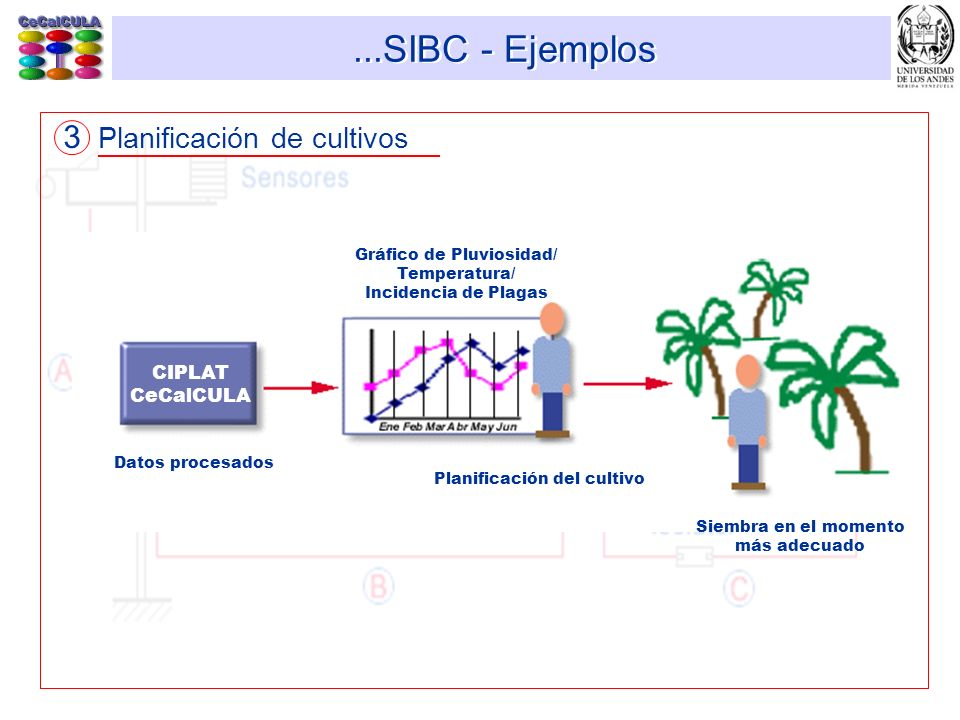 ...SIBC - Ejemplos 3 Planificación de cultivos CIPLAT CeCalCULA Gráfico de Pluviosidad/ Temperatura/ Incidencia de Plagas Planificación del cultivo Si