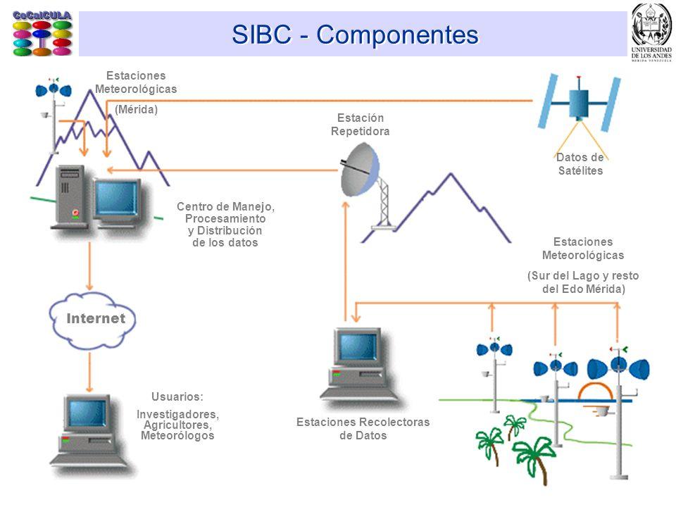 SIBC - Componentes Internet Datos de Satélites Estación Repetidora Estaciones Recolectoras de Datos Estaciones Meteorológicas (Sur del Lago y resto de