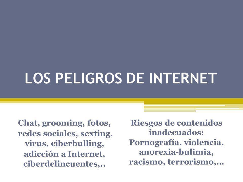 LOS PELIGROS DE INTERNET Chat, grooming, fotos, redes sociales, sexting, virus, ciberbulling, adicción a Internet, ciberdelincuentes,.. Riesgos de con