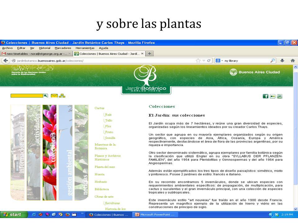 y sobre las plantas