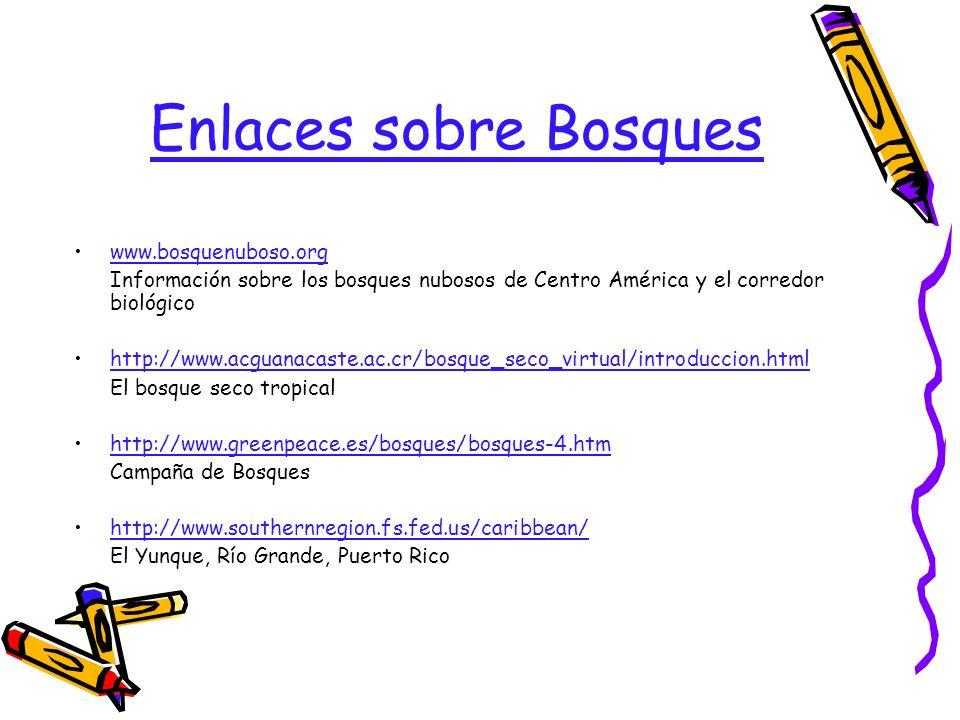 Enlaces sobre Bosques www.bosquenuboso.org Información sobre los bosques nubosos de Centro América y el corredor biológico http://www.acguanacaste.ac.