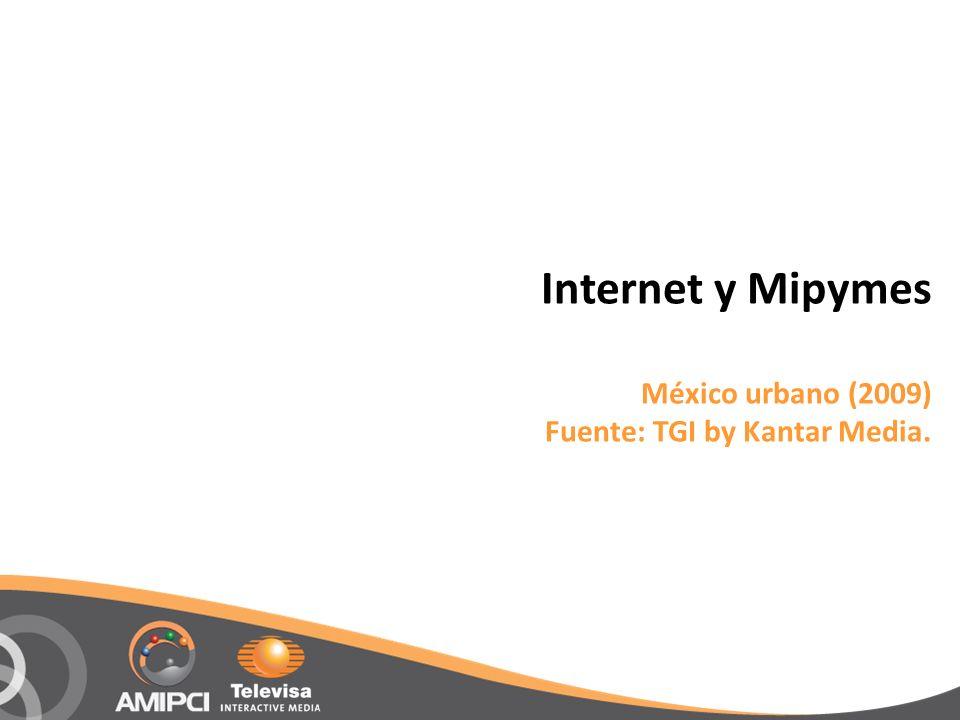 Internet y Mipymes México urbano (2009) Fuente: TGI by Kantar Media.