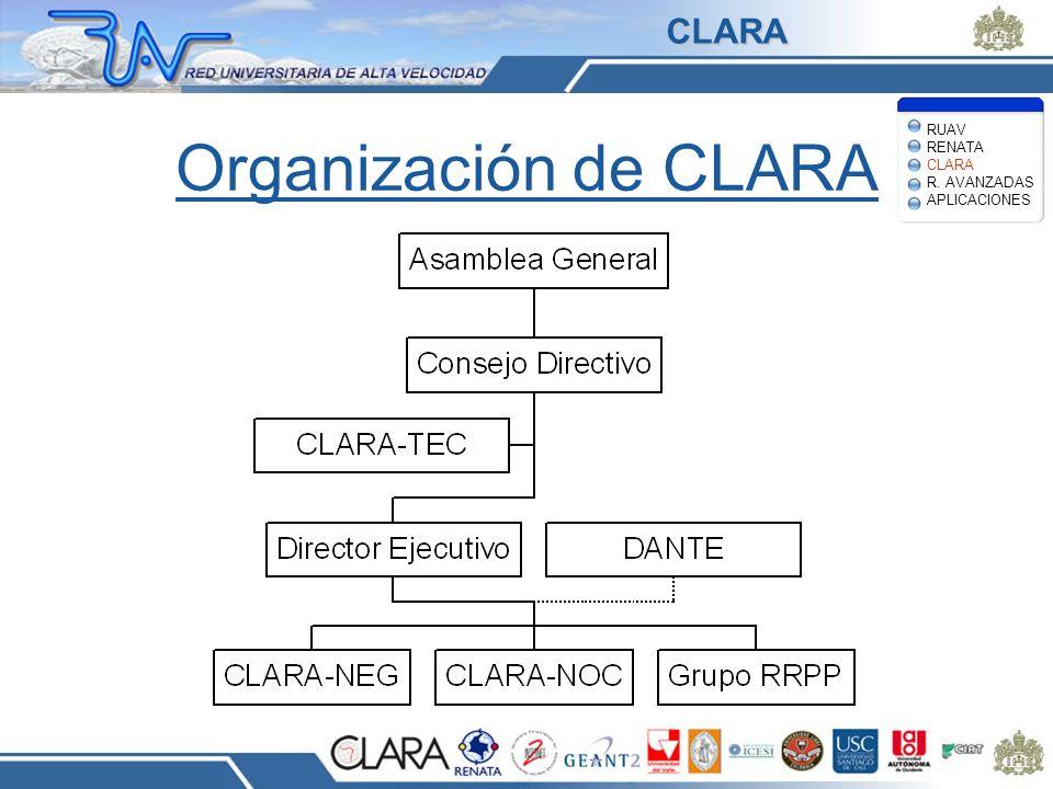 Organización de CLARA RUAV RENATA CLARA R. AVANZADAS APLICACIONES CLARA