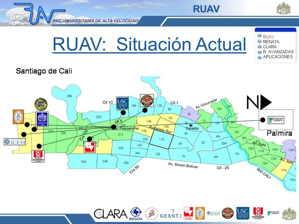 RUAV: Situación Actual Santiago de Cali RUAV RENATA CLARA R. AVANZADAS APLICACIONES RUAV