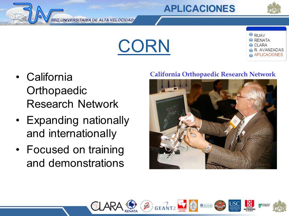 CORN California Orthopaedic Research Network Expanding nationally and internationally Focused on training and demonstrations APLICACIONES RUAV RENATA CLARA R.