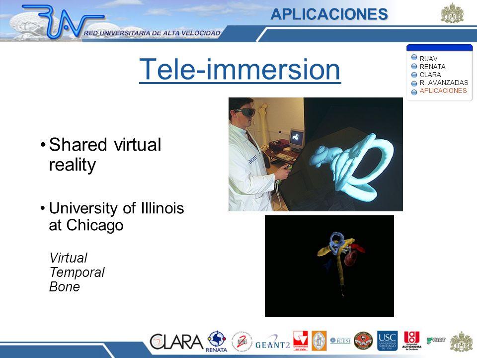 Tele-immersion Shared virtual reality University of Illinois at Chicago Virtual Temporal Bone Images courtesy Univ.