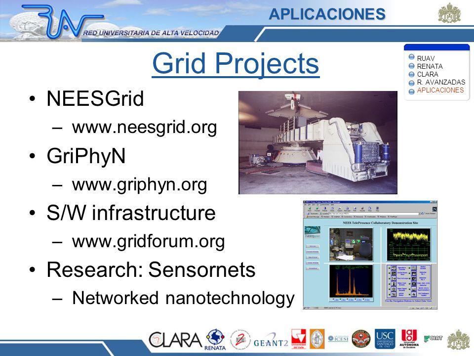 Grid Projects NEESGrid – www.neesgrid.org GriPhyN – www.griphyn.org S/W infrastructure – www.gridforum.org Research: Sensornets – Networked nanotechno