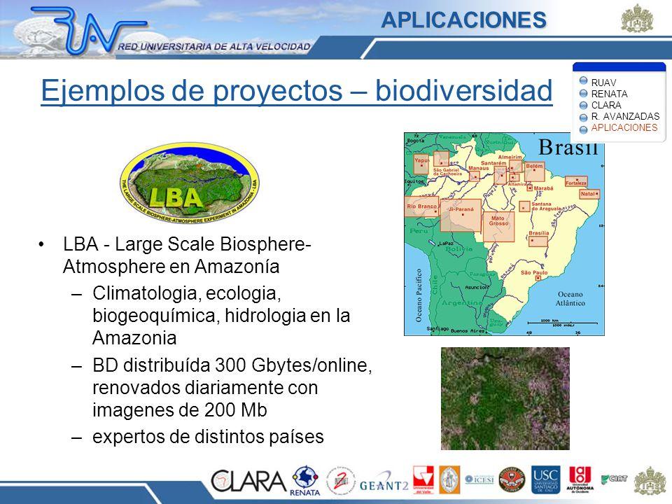 Ejemplos de proyectos – biodiversidad LBA - Large Scale Biosphere- Atmosphere en Amazonía –Climatologia, ecologia, biogeoquímica, hidrologia en la Ama