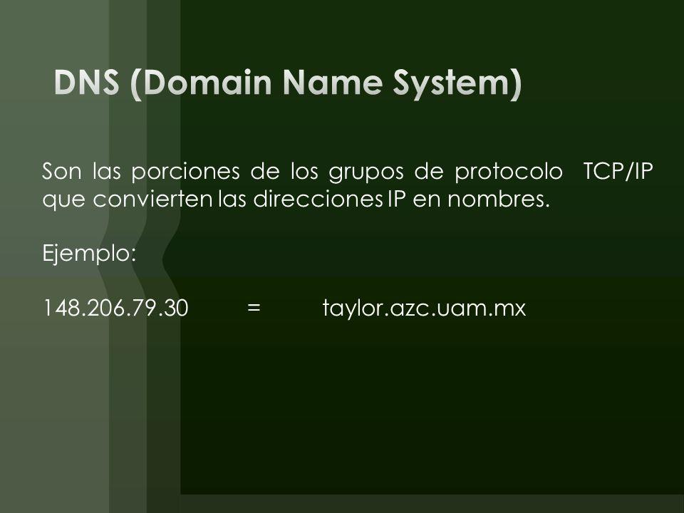 Son las porciones de los grupos de protocolo TCP/IP que convierten las direcciones IP en nombres. Ejemplo: 148.206.79.30= taylor.azc.uam.mx