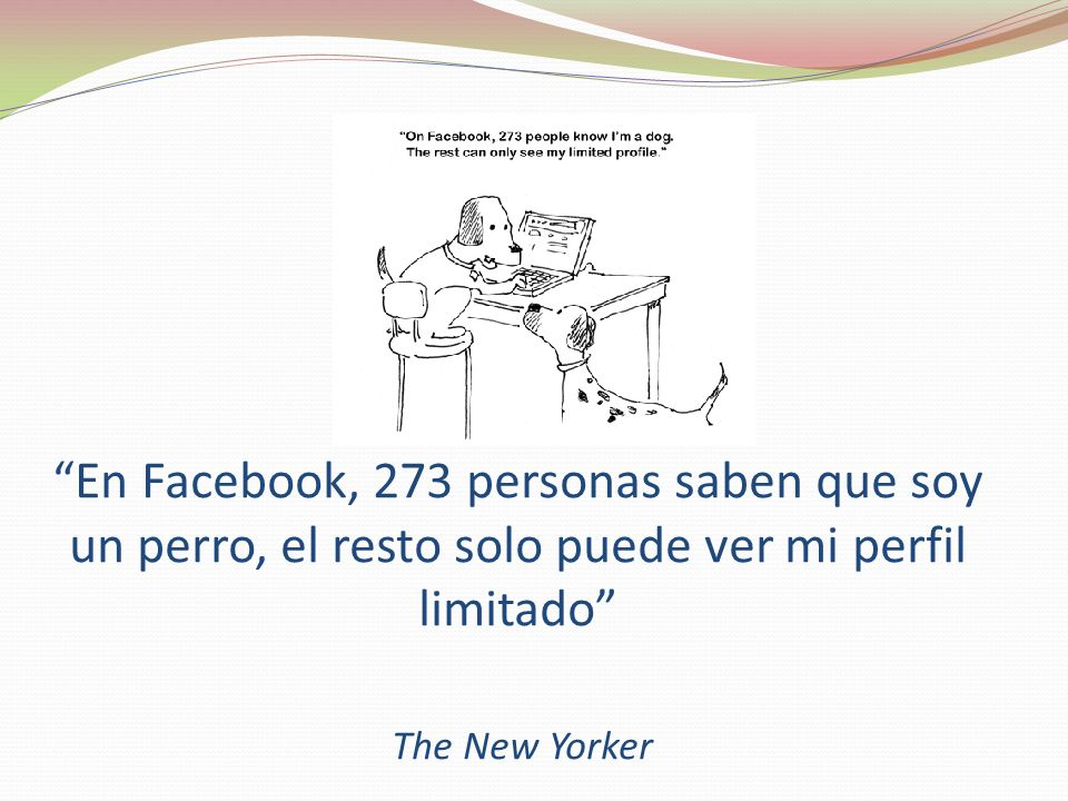 En Facebook, 273 personas saben que soy un perro, el resto solo puede ver mi perfil limitado The New Yorker