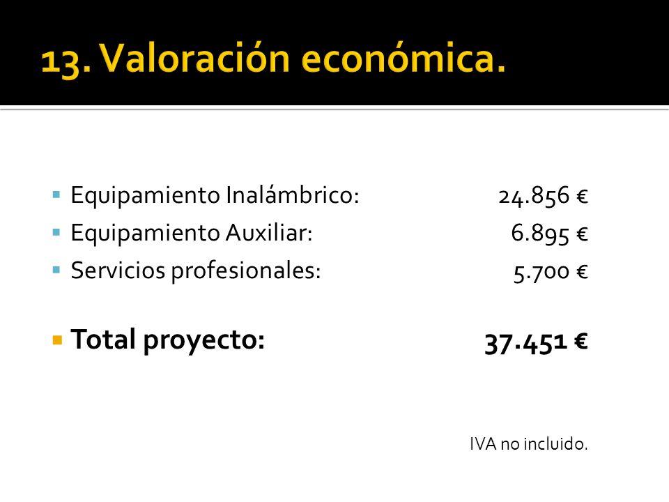 Equipamiento Inalámbrico: 24.856 Equipamiento Auxiliar: 6.895 Servicios profesionales: 5.700 Total proyecto: 37.451 IVA no incluido.