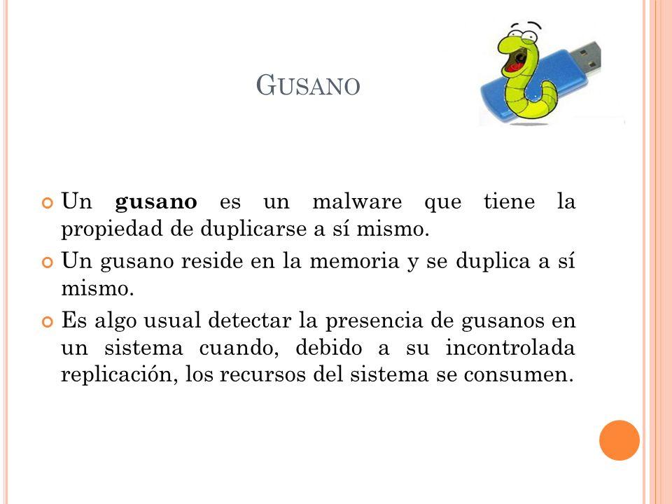 G USANO Un gusano es un malware que tiene la propiedad de duplicarse a sí mismo.
