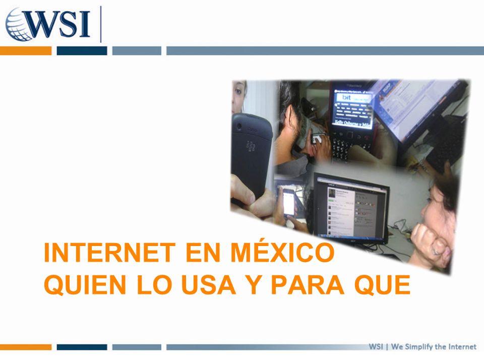 INTERNET EN MÉXICO QUIEN LO USA Y PARA QUE
