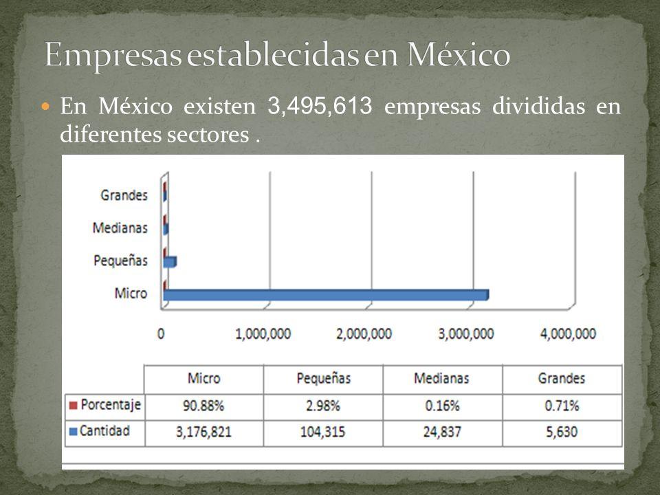 En México existen 3,495,613 empresas divididas en diferentes sectores.