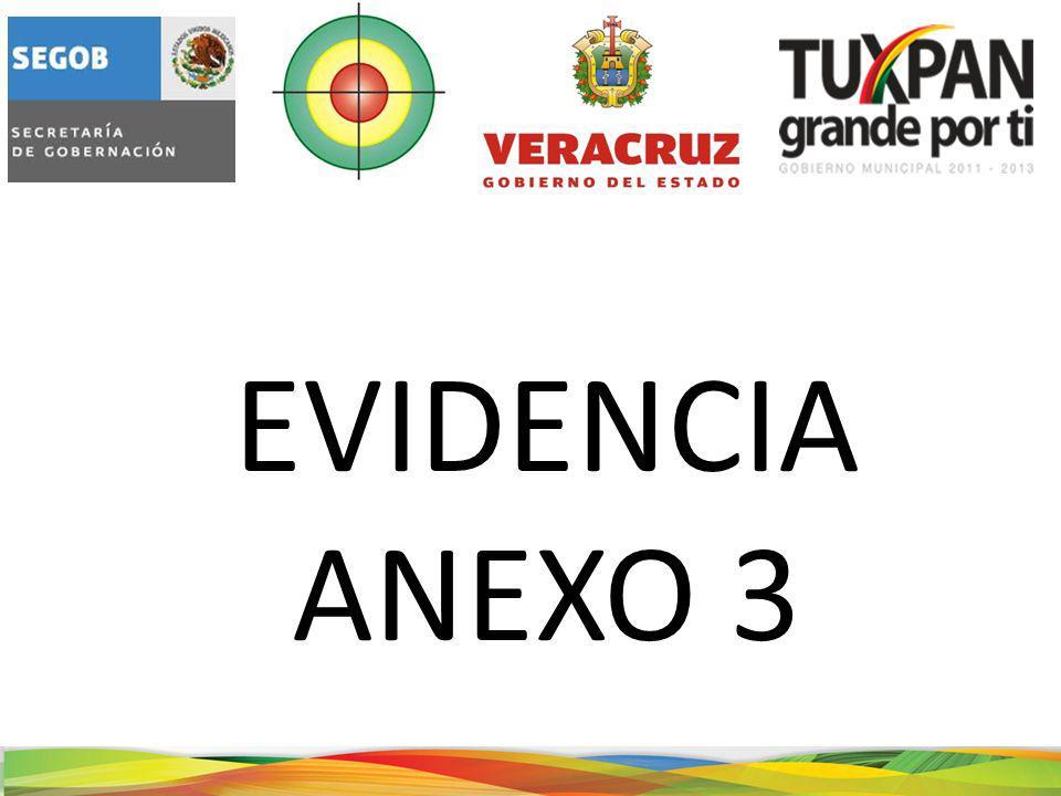 EVIDENCIA ANEXO 3