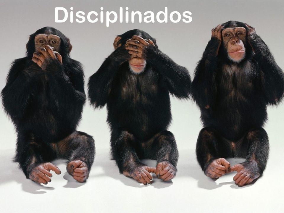 Disciplinados