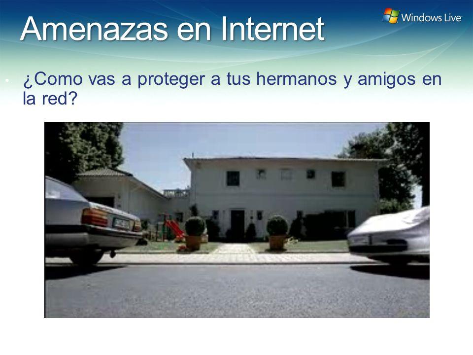 Amenazas en Internet ¿Como vas a proteger a tus hermanos y amigos en la red?