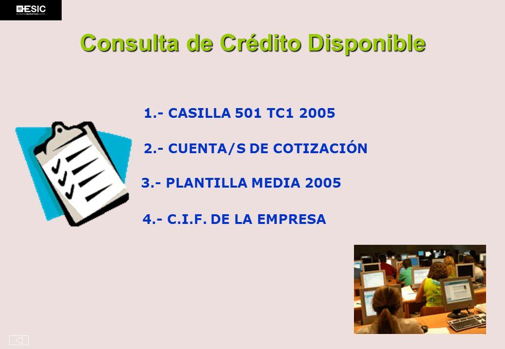 Consulta de Crédito Disponible 1.- CASILLA 501 TC1 2005 2.- CUENTA/S DE COTIZACIÓN 3.- PLANTILLA MEDIA 2005 4.- C.I.F. DE LA EMPRESA