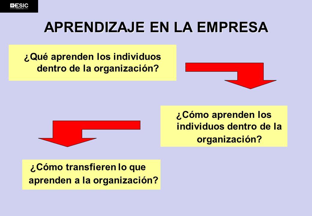 APRENDIZAJE EN LA EMPRESA ¿Qué aprenden los individuos dentro de la organización? ¿Cómo aprenden los individuos dentro de la organización? ¿Cómo trans