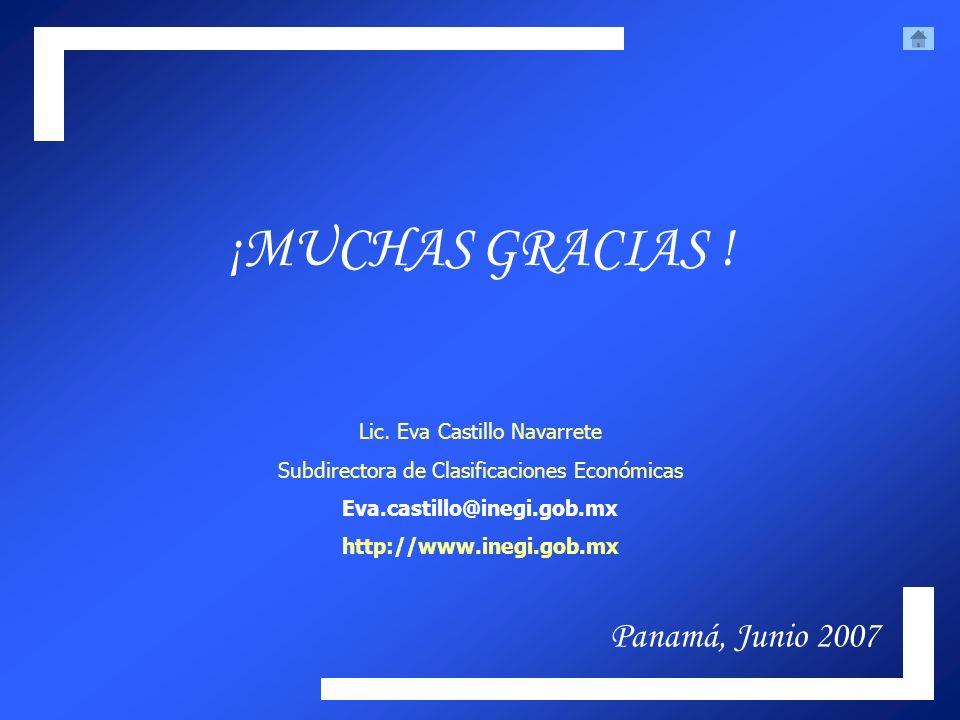 ¡MUCHAS GRACIAS ! Lic. Eva Castillo Navarrete Subdirectora de Clasificaciones Económicas Eva.castillo@inegi.gob.mx http://www.inegi.gob.mx Panamá, Jun