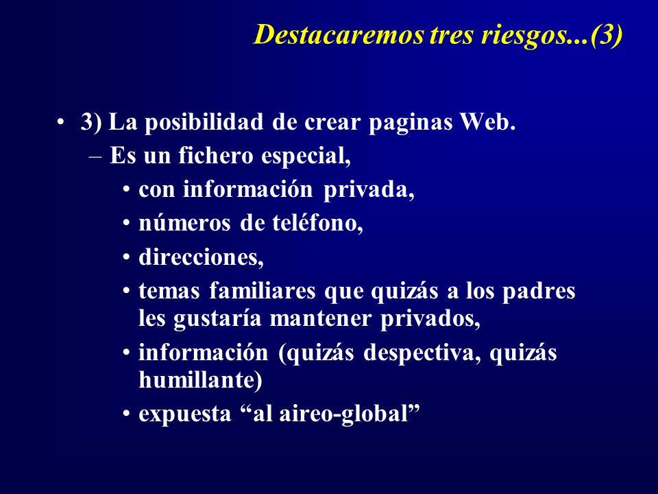 Destacaremos tres riesgos...(3) 3) La posibilidad de crear paginas Web.