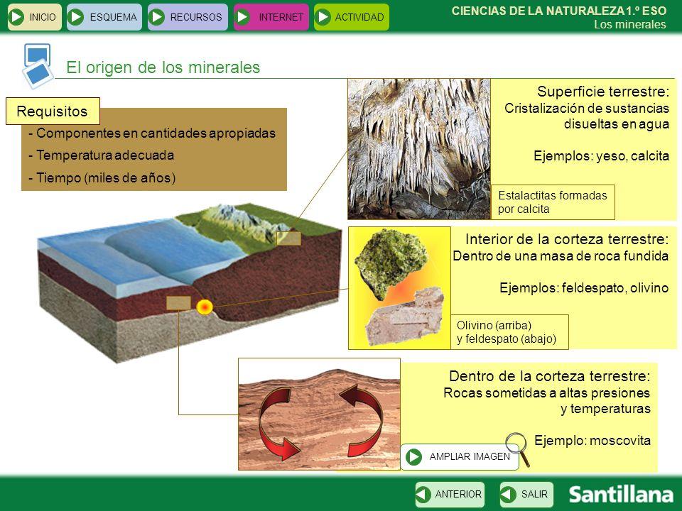 CIENCIAS DE LA NATURALEZA 1.º ESO Los minerales Dentro de la corteza terrestre: Rocas sometidas a altas presiones y temperaturas Ejemplo: moscovita In