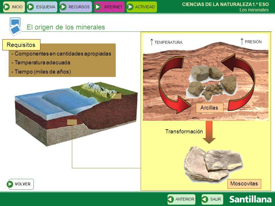 CIENCIAS DE LA NATURALEZA 1.º ESO Los minerales INICIOESQUEMARECURSOSINTERNETACTIVIDAD El origen de los minerales SALIRANTERIOR PRESIÓN TEMPERATURA Tr