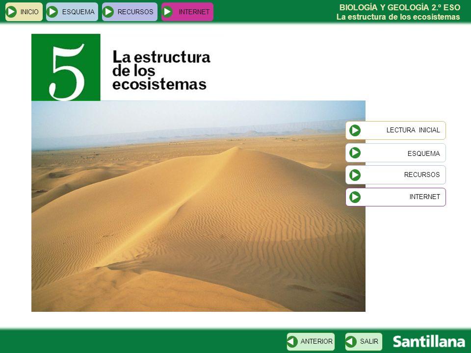 BIOLOGÍA Y GEOLOGÍA 2.º ESO La estructura de los ecosistemas INICIOESQUEMARECURSOSINTERNET Lectura inicial SALIRANTERIOR En el invierno de 2005, unos científicos españoles que estudiaban las aves migratorias en Mauritania, oyeron hablar de una charca en la que vivían cocodrilos.