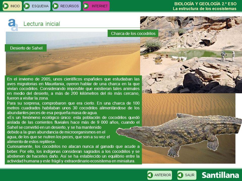 BIOLOGÍA Y GEOLOGÍA 2.º ESO La estructura de los ecosistemas INICIOESQUEMARECURSOSINTERNET Lectura inicial SALIRANTERIOR En el invierno de 2005, unos