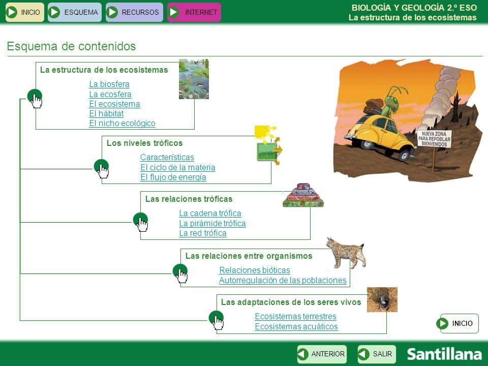 BIOLOGÍA Y GEOLOGÍA 2.º ESO La estructura de los ecosistemas INICIOESQUEMARECURSOSINTERNET INICIO Recursos para la explicación de la unidad SALIRANTERIOR La biosfera La ecosfera El ecosistema El hábitat El nicho ecológico Los niveles tróficos El ciclo de la materia El flujo de energía La cadena trófica La pirámide trófica La red trófica Las relaciones bióticas Autorregulación de poblaciones Adaptaciones a ecosistemas terrestres Adaptaciones a ecosistemas acuáticos Enlaces