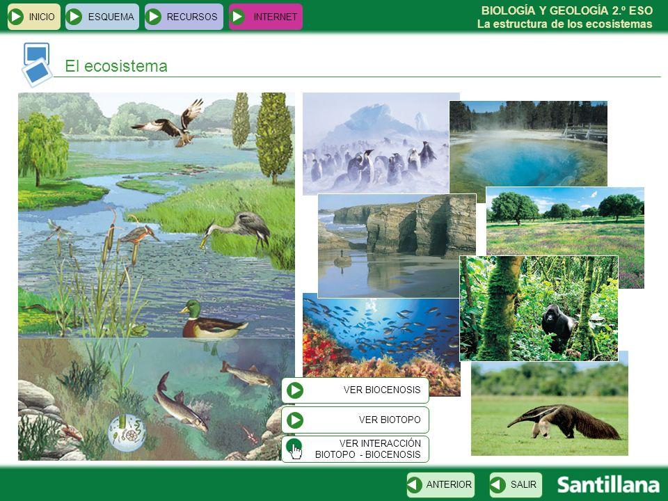 BIOLOGÍA Y GEOLOGÍA 2.º ESO La estructura de los ecosistemas INICIOESQUEMARECURSOSINTERNET El ecosistema SALIRANTERIOR VER BIOTOPO VER BIOCENOSIS VER
