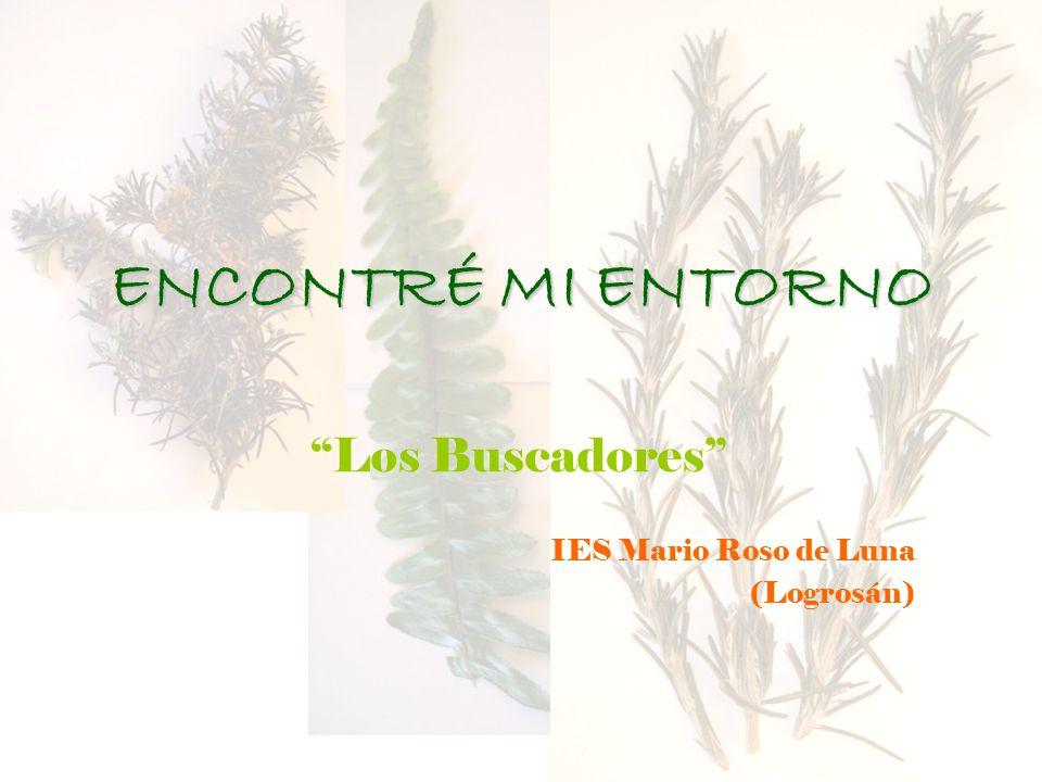 ENCONTRÉ MI ENTORNO Los Buscadores IES Mario Roso de Luna (Logrosán)