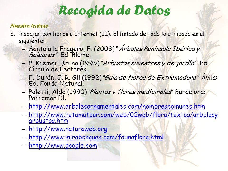 Recogida de Datos Nuestro trabajo 3. Trabajar con libros e Internet (II). El listado de todo lo utilizado es el siguiente: – Santolalla Fragero, F. (2