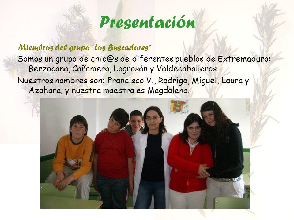 Presentación Miembros del grupo Los Buscadores Somos un grupo de chic@s de diferentes pueblos de Extremadura: Berzocana, Cañamero, Logrosán y Valdecab