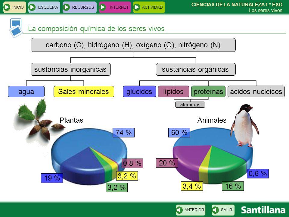 INICIOESQUEMARECURSOSINTERNETACTIVIDAD La composición química de los seres vivos SALIRANTERIOR CIENCIAS DE LA NATURALEZA 1.º ESO Los seres vivos carbo