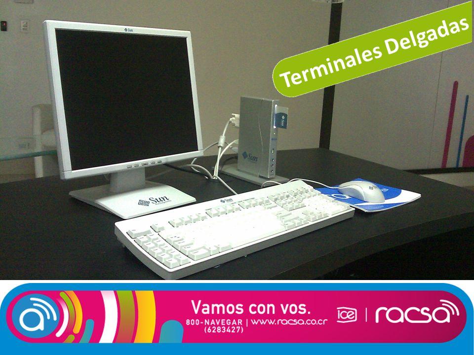 Terminales Delgadas