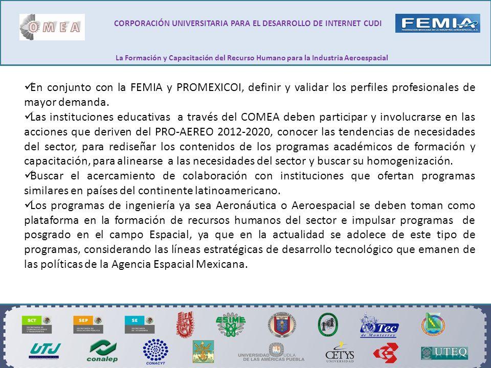 En conjunto con la FEMIA y PROMEXICOI, definir y validar los perfiles profesionales de mayor demanda. Las instituciones educativas a través del COMEA