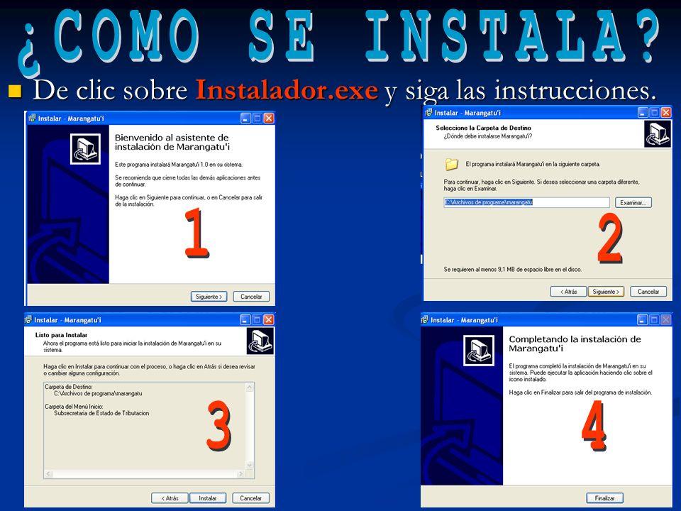 De clic sobre Instalador.exe y siga las instrucciones.