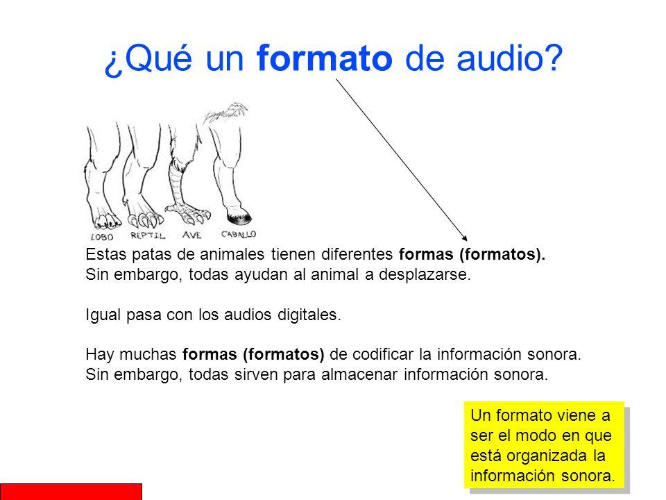 ¿Qué un formato de audio? Un formato viene a ser el modo en que está organizada la información sonora. Estas patas de animales tienen diferentes forma
