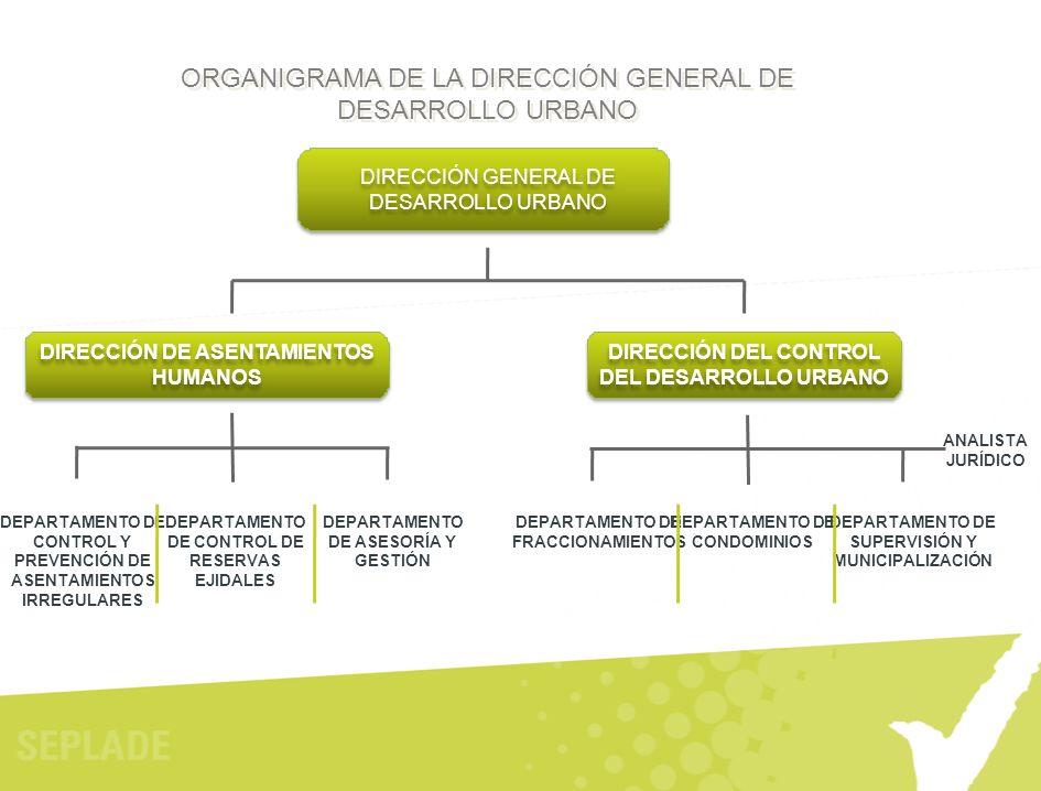ORGANIGRAMA DE LA DIRECCIÓN GENERAL DE DESARROLLO URBANO DIRECCIÓN GENERAL DE DESARROLLO URBANO DIRECCIÓN DE ASENTAMIENTOS HUMANOS DEPARTAMENTO DE CON